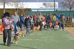 Paseo Canino (16)