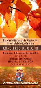 Programa Concierto Banda Provincial en Molina el  8-11-15-1