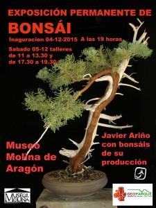 exposición estable de Bonsaís en Guadalajara