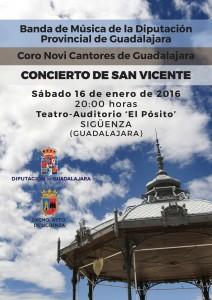 Concierto Banda y Novi en Sigüenza enero 2016