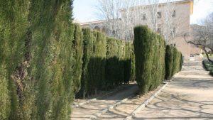 jardines del palacio infantado