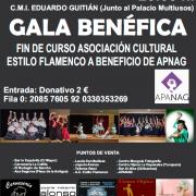 Gala Benéfica fin de curso asociación cultural estilo flamenco a beneficio de apnag