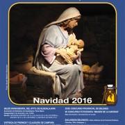cartelbelenistas_2016