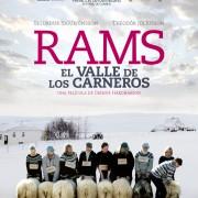 rams-el-valle-de-los-carneros