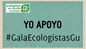 xix-entrega-de-premios-de-medio-ambiente-provincia-de-guadalajara