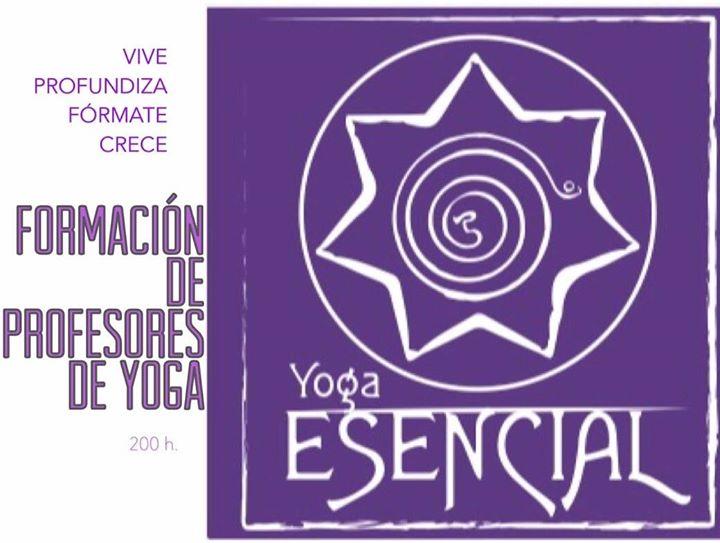 Formación instructores Yoga