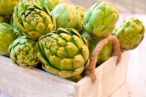 Taller Gastronómico – La Alcachofa, Productazo De Invierno