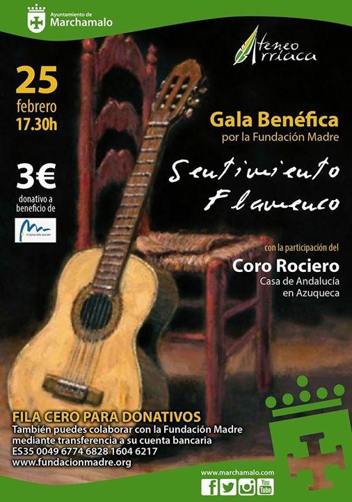 """Sentimiento Flamenco"""""""