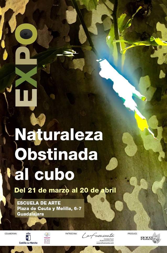 Naturaleza Obstinada al Cubo
