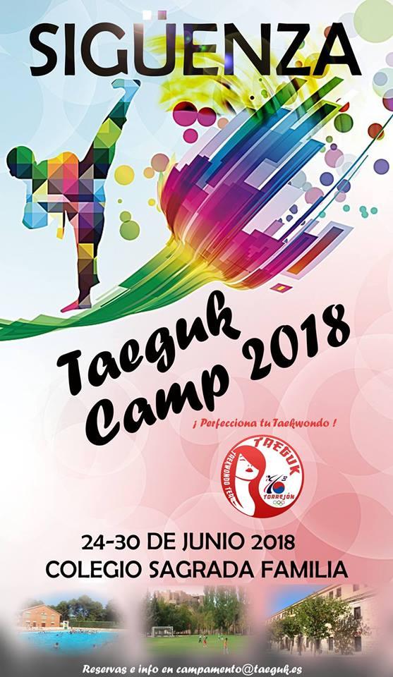 Taeguk Camp 2018