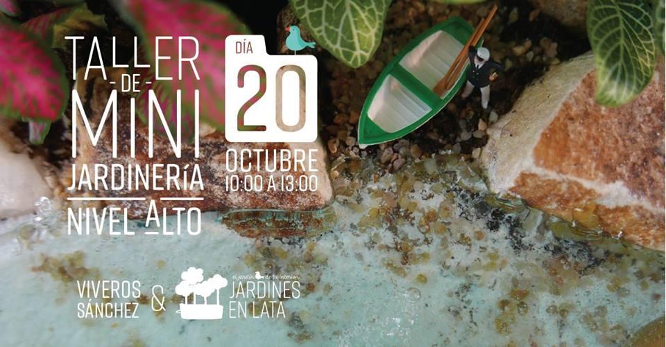 """Workshop: """"Diseña Un Terrario Con La Técnica Del Agua"""""""
