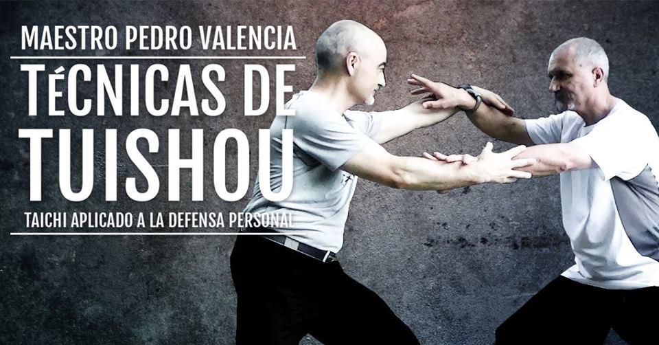 Técnicas de Tuishou. Taichi aplicado a la defensa personal