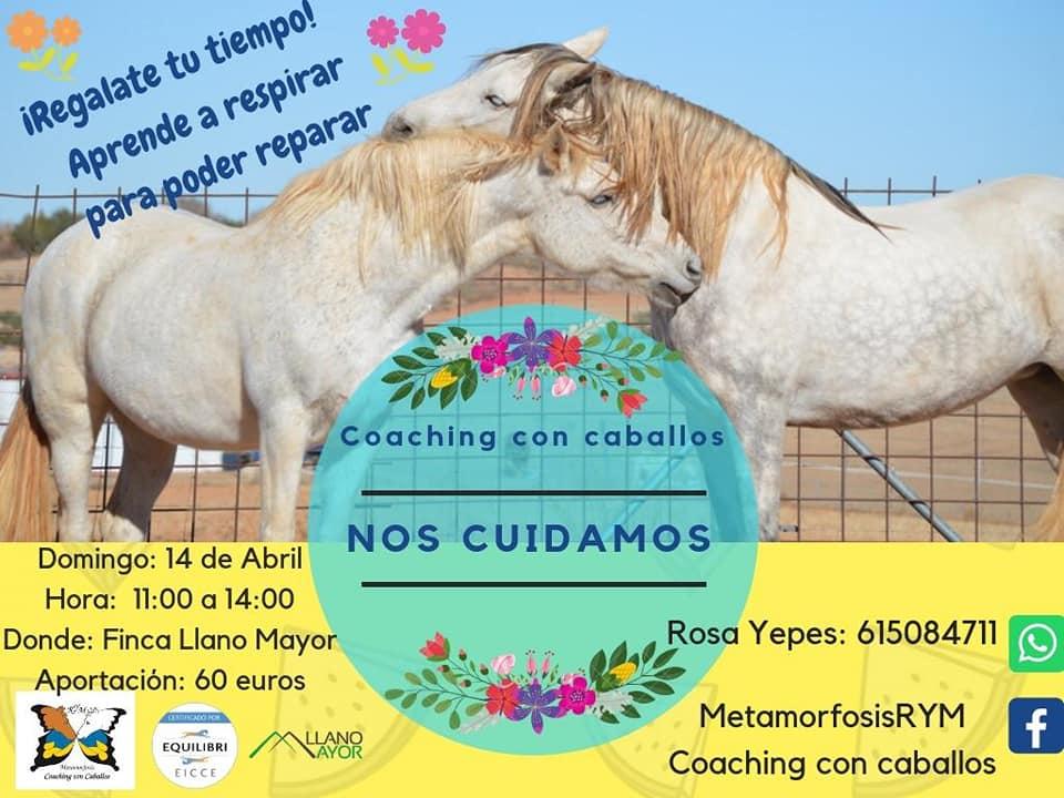 Coaching con Caballos NOS CUIDAMOS