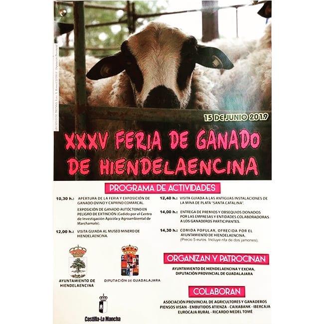 Feria de ganado de Hiendelaencina 2019