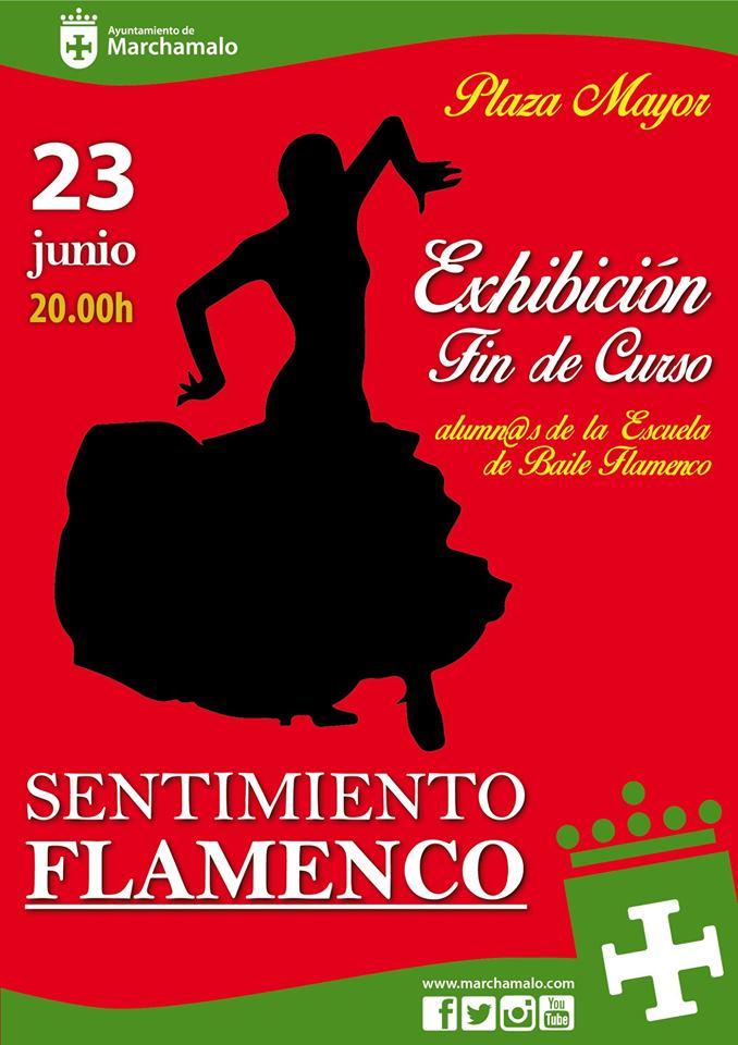 'Sentimiento Flamenco'