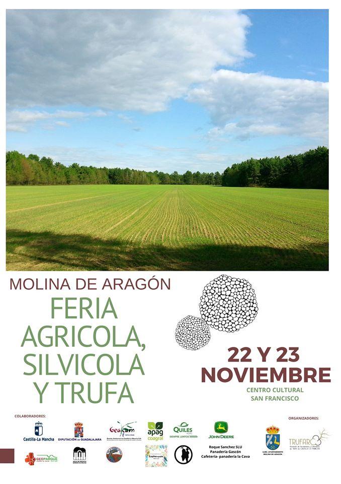 Feria agrícola, silvícola y de la trufa
