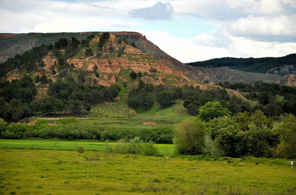 Trotalentos: Excursión a los Cerros de Alcalá